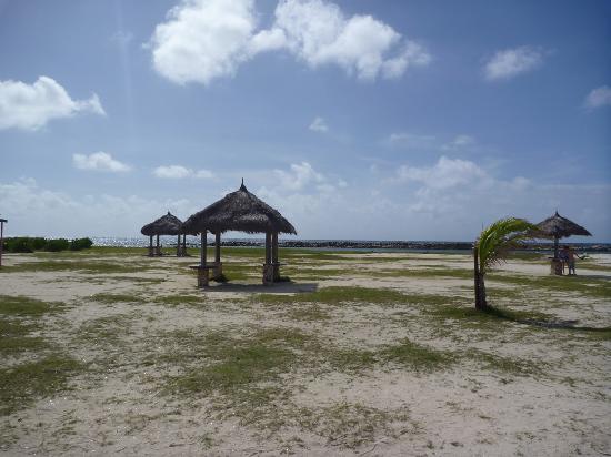 View Baby Beach