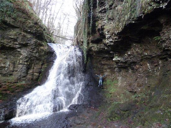 Hareshaw Linn: The waterfall