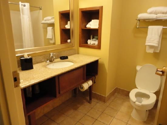 Holiday Inn Express Anniston / Oxford: LARGE bathroom