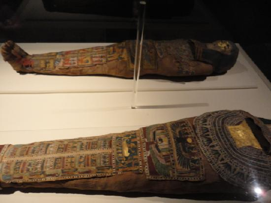 Anniston Museum of Natural History: REAL mummies!!