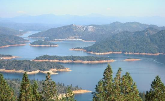 "Shasta Lake: lots of ""arms"" you can scout out"