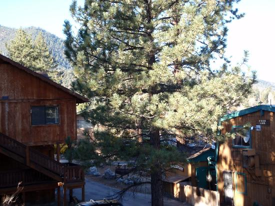 Pine Mountain Hotel: Little town in the mountains