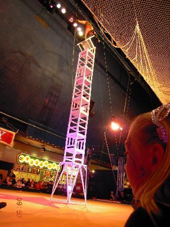 Circus Circus Reno: still have free circus acts