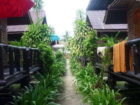 Banana Garden Home: looking to the beach