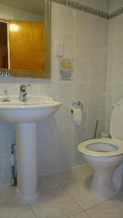 Leigham Court Hotel: bagno