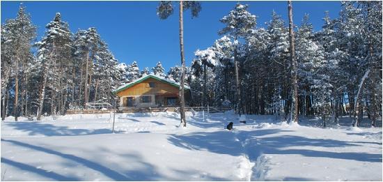 Le Bois Fae : Le bois faé en hiver