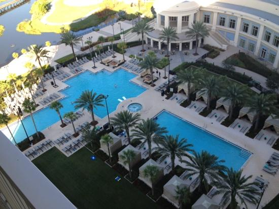 Waldorf Astoria Orlando : pool area