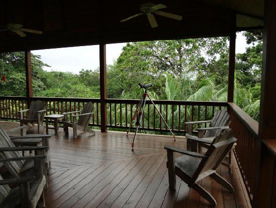Tranquilo Bay Eco Adventure Lodge: Upper Viewing Area