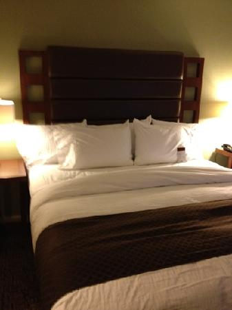 Doubletree Collinsville/St. Louis: nice rooms