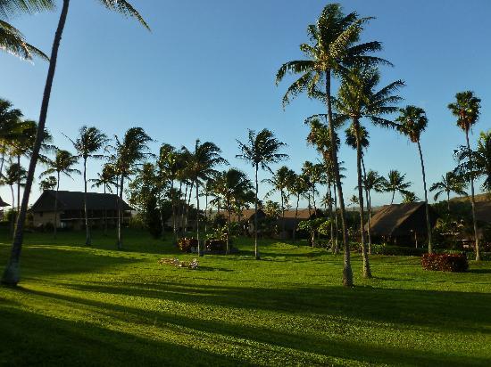 Castle Kaluakoi Villas: Un aperçu du site, vu de la plage