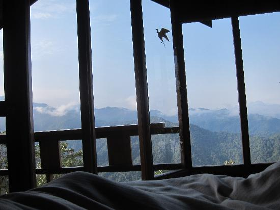 Santa Lucia Cloud Forest : cabin view