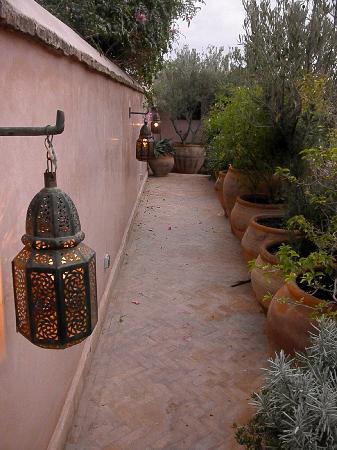 Riad Meriem : rooftop patio