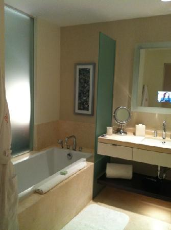 Hotel Arista at CityGate Centre: Corner King Bathroom