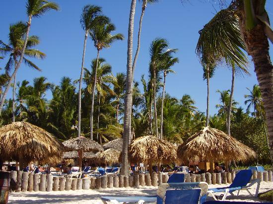 Occidental Grand Punta Cana: La magnifique plage !!