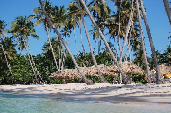 Chalet Tropical Village: La Playita, our small cute closer beach