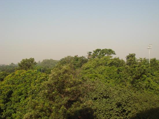 Shivalik View : view from room