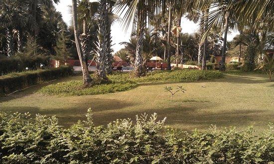 Golden Beach Hotel: Garden view from the terrace