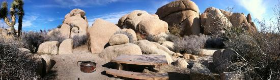 Jumbo Rocks Campground: Site #89