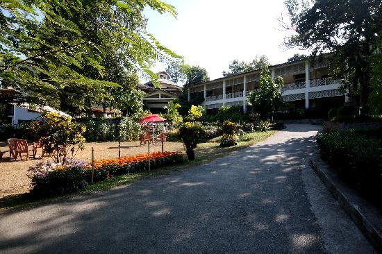IORA - The Retreat,Kaziranga: Way to Resturant