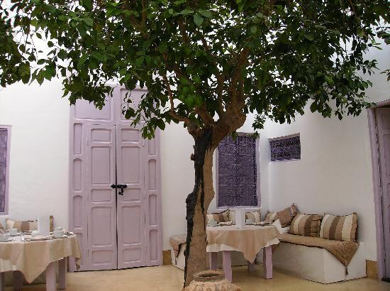 Dar Soukaina: L'albero di arance