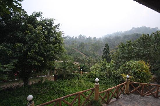 Brahmaputra Jungle Resort: View from Room