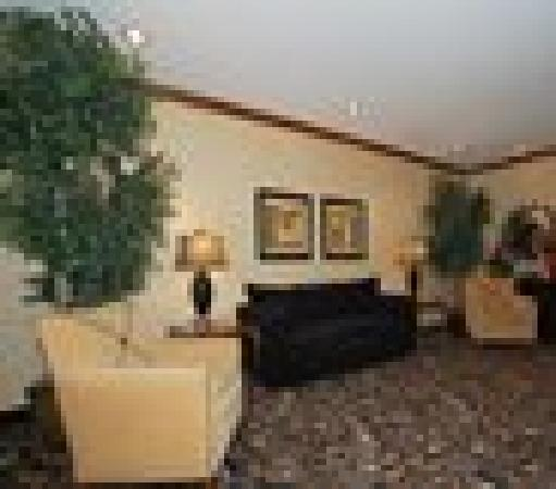 Comfort Inn & Suites Grinnell: Den