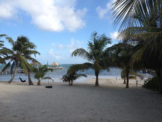 Caribe Island Condos : View from unit 7