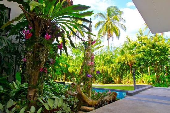 The Chill Resort & Spa, Koh Chang: Love Orchid with Blue Sky