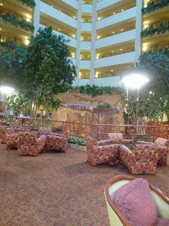 Embassy Suites by Hilton Hot Springs: Interior 1
