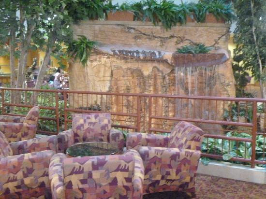 Embassy Suites by Hilton Hot Springs : Interior 2