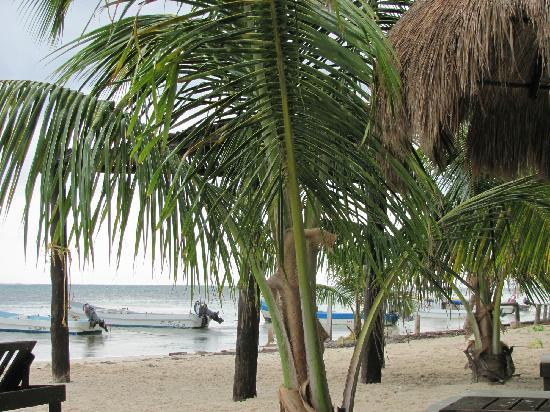 Luna de Plata · Hotel: beach
