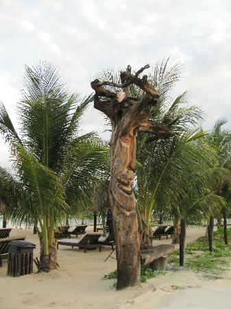 Luna de Plata . Hotel: Cool carved tree on beach