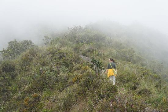 Cotacachi, Ecuador: walking into the clouds on the trail