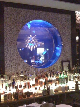 The Seagate Hotel & Spa: The Atlantic Grille and Jellies Bar