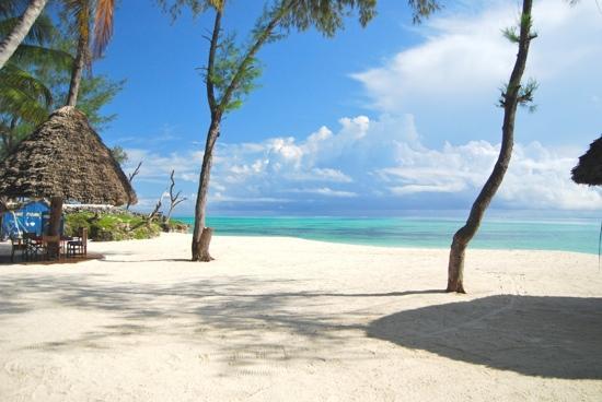 Pongwe Beach Hotel: Pongwe beach