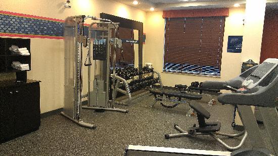 Hampton Inn by Hilton Edmonton/South: Fitness room - plate machine & dumbbell rack