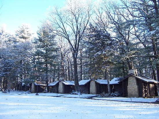 Winter Wonder Picture Of White Pines Forest State Park