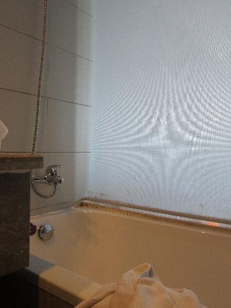 Huishang International Hotel: Moldy pull down shade in bathroom