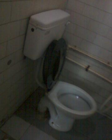 Sri Ganesh Bhavan: Toilet