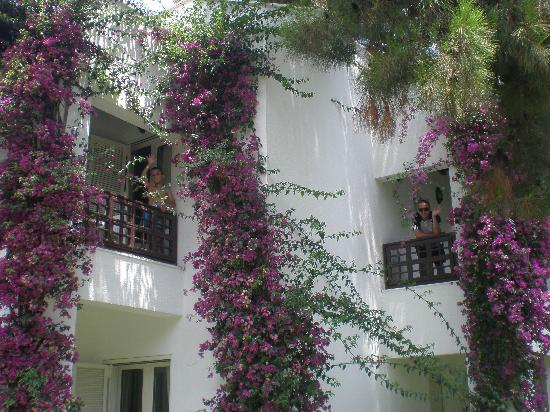 Simena Sun Club : villas