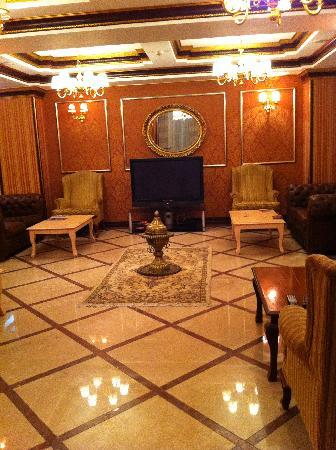 Albatros Premier Hotel: Empfang