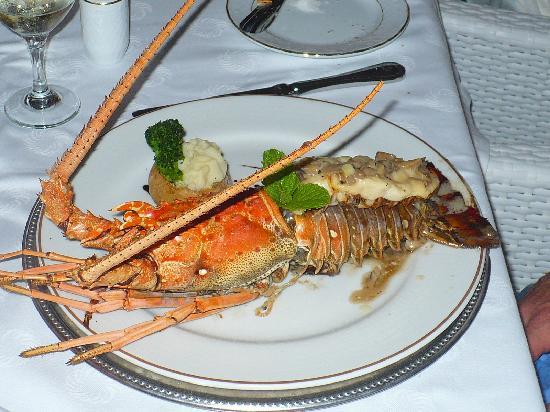 Melia Cayo Coco: Lobster
