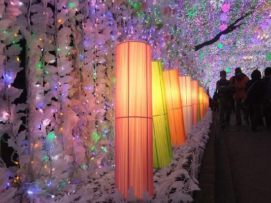 Gotemba, Japan: きれいで~す