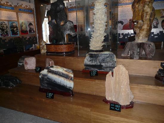 Jinshitan Geological Museum : 珍しそうな石です。