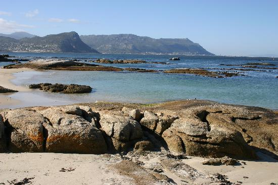 Cheriton Guest House B&B: Simon's Town Beach