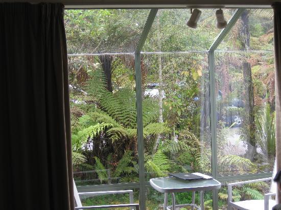 Punga Grove Motel & Suites 사진