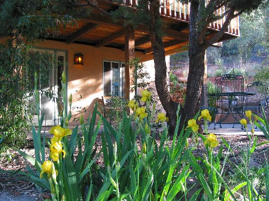Kingston, NM: The cozy Studio has a sheltered private patio.