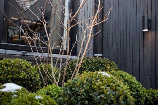 A Cote du Cinquantenaire: The garden