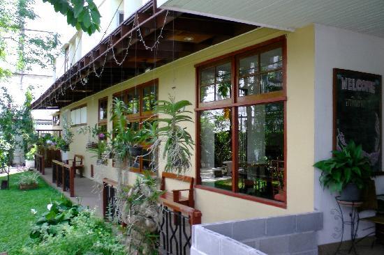 JL Bangkok: Front garden
