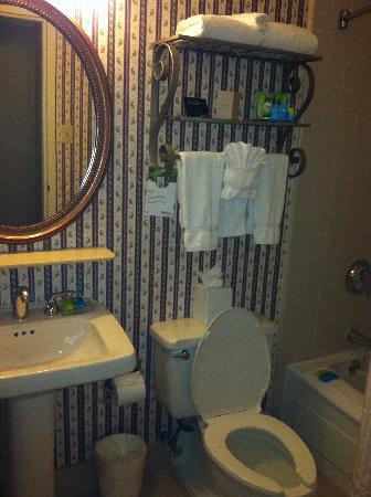 Radisson Piscataway: the bathroom